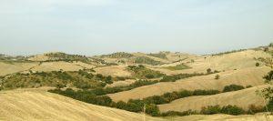 cinigiano-hills